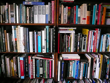 that's just a little taste of my bookshelf situation...